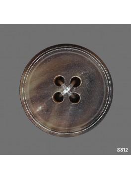 Horn Brown Tortoise (B8812)