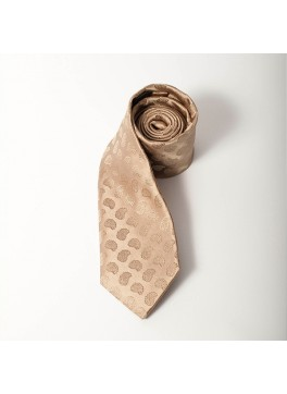 Tan Paisley Tie