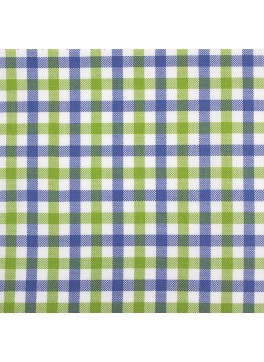 Blue/Lime Green/White Gingham (SV 513602-190)