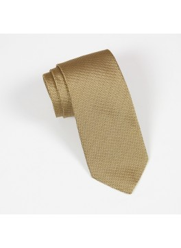 Gold Textured Solid Tie