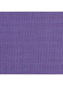 Purple Solid (SV 513366-240)