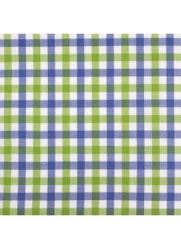 Blue/Lime Green/White Gingham (SV 513602-190)