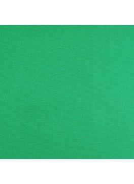 Sea Green Solid (SV 513655-240)